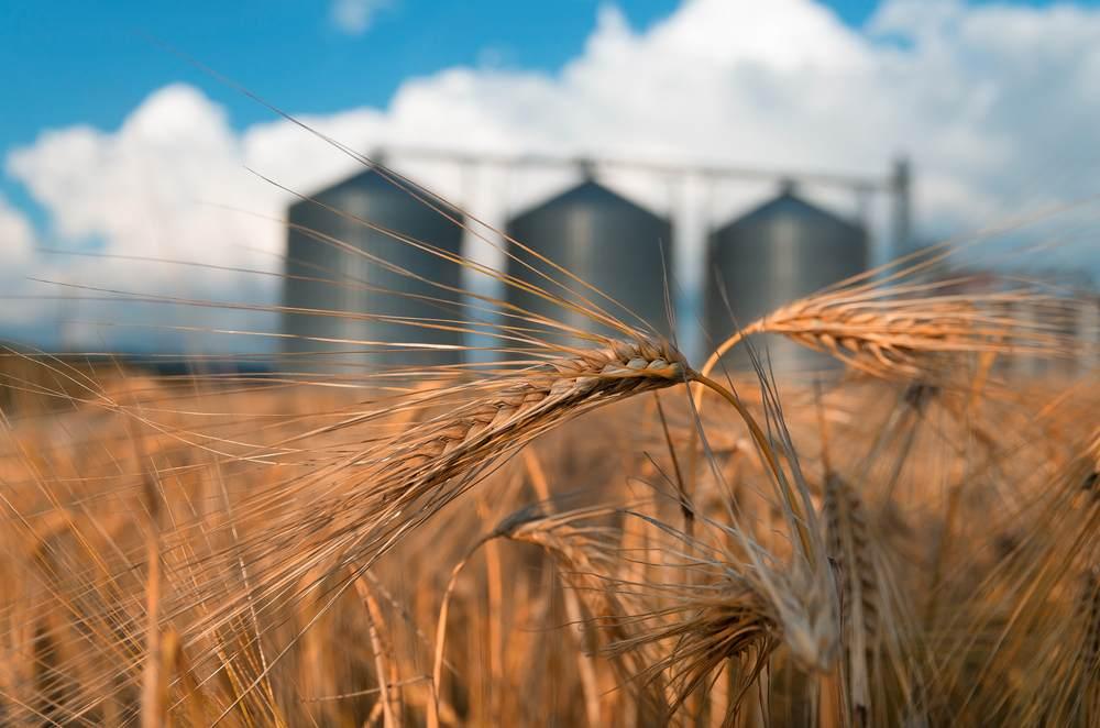 Le défi de la gestion logistique liée aux silos-2