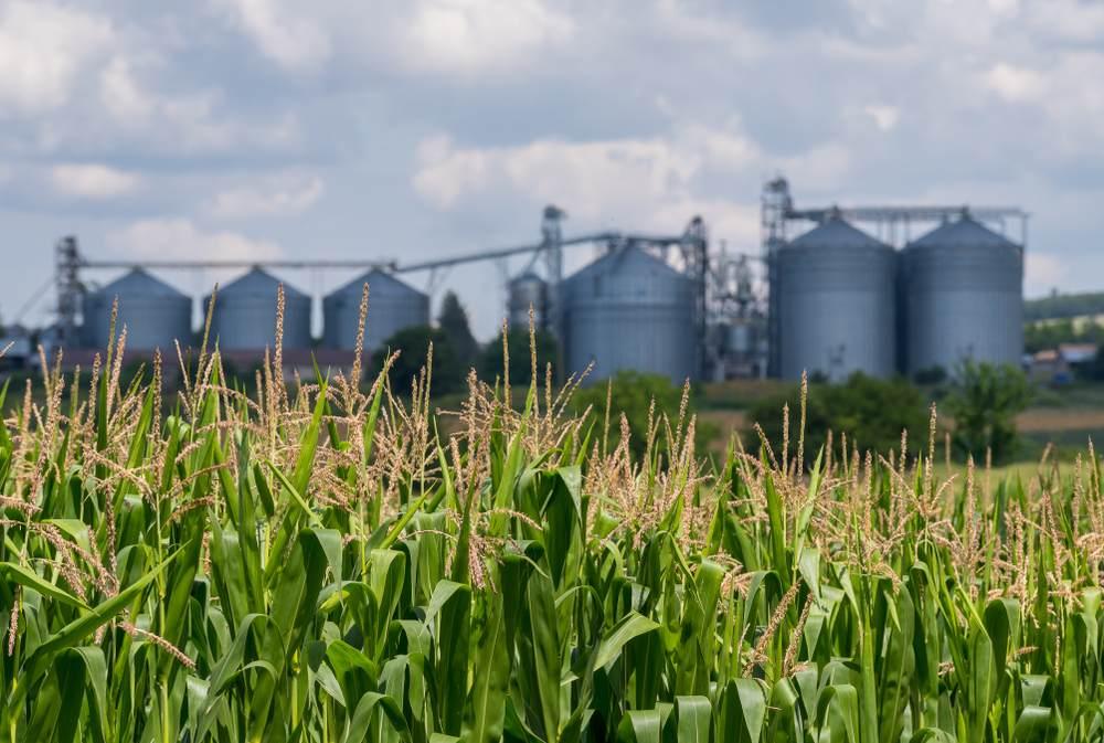Les avantages de surveiller ses silos-1