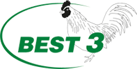 cropped-best-3-logo
