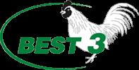 cropped-best-3-logo